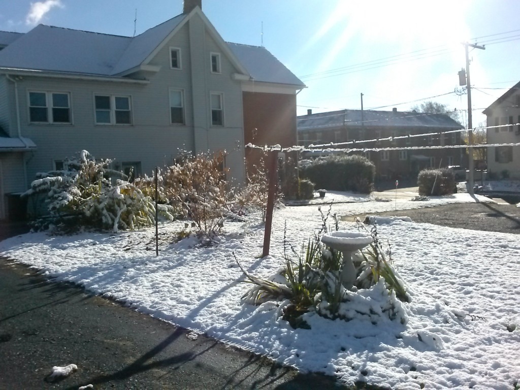 First snow 11-14-2014 = 1.75 inches
