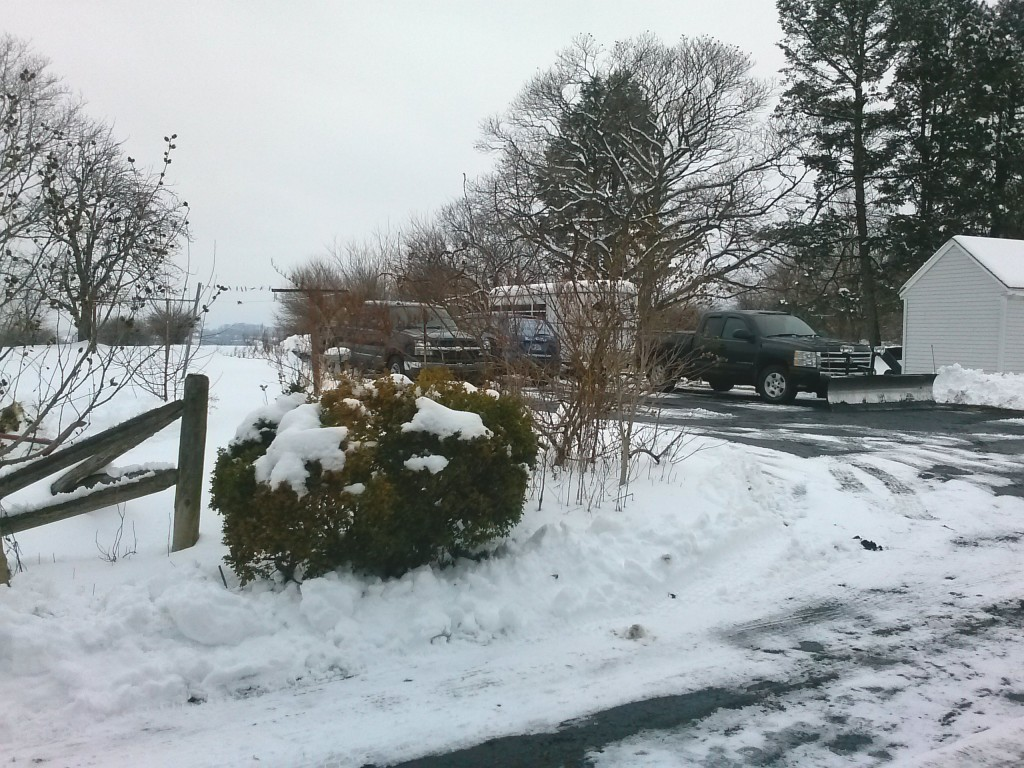 """Storm Iola, dropped 5.5"""" of heavy wet snow overnight."""