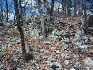 Yes, there is a trail forus going through these boulders.  Can't see it, can  you (HA!)