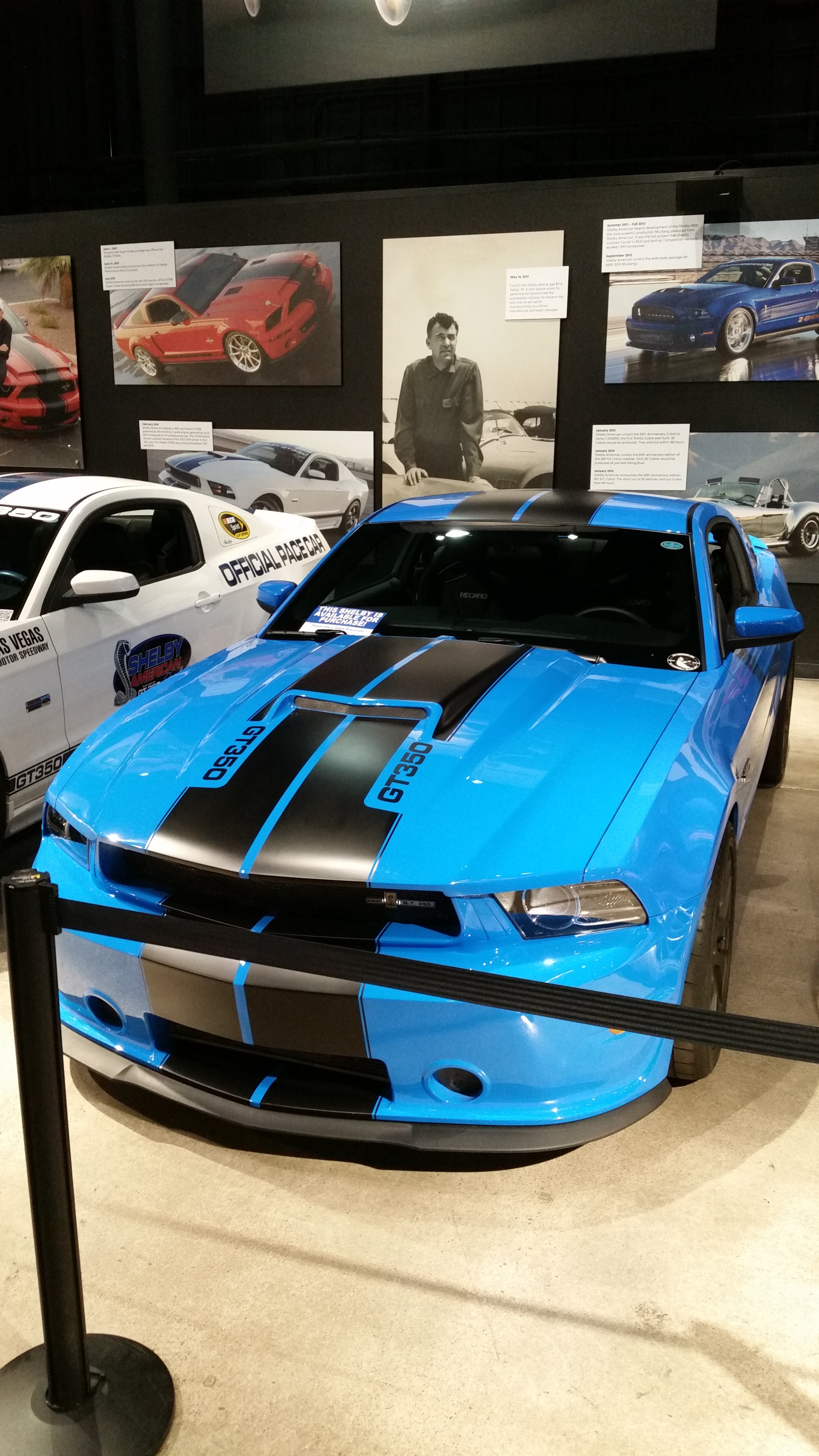 shelby15