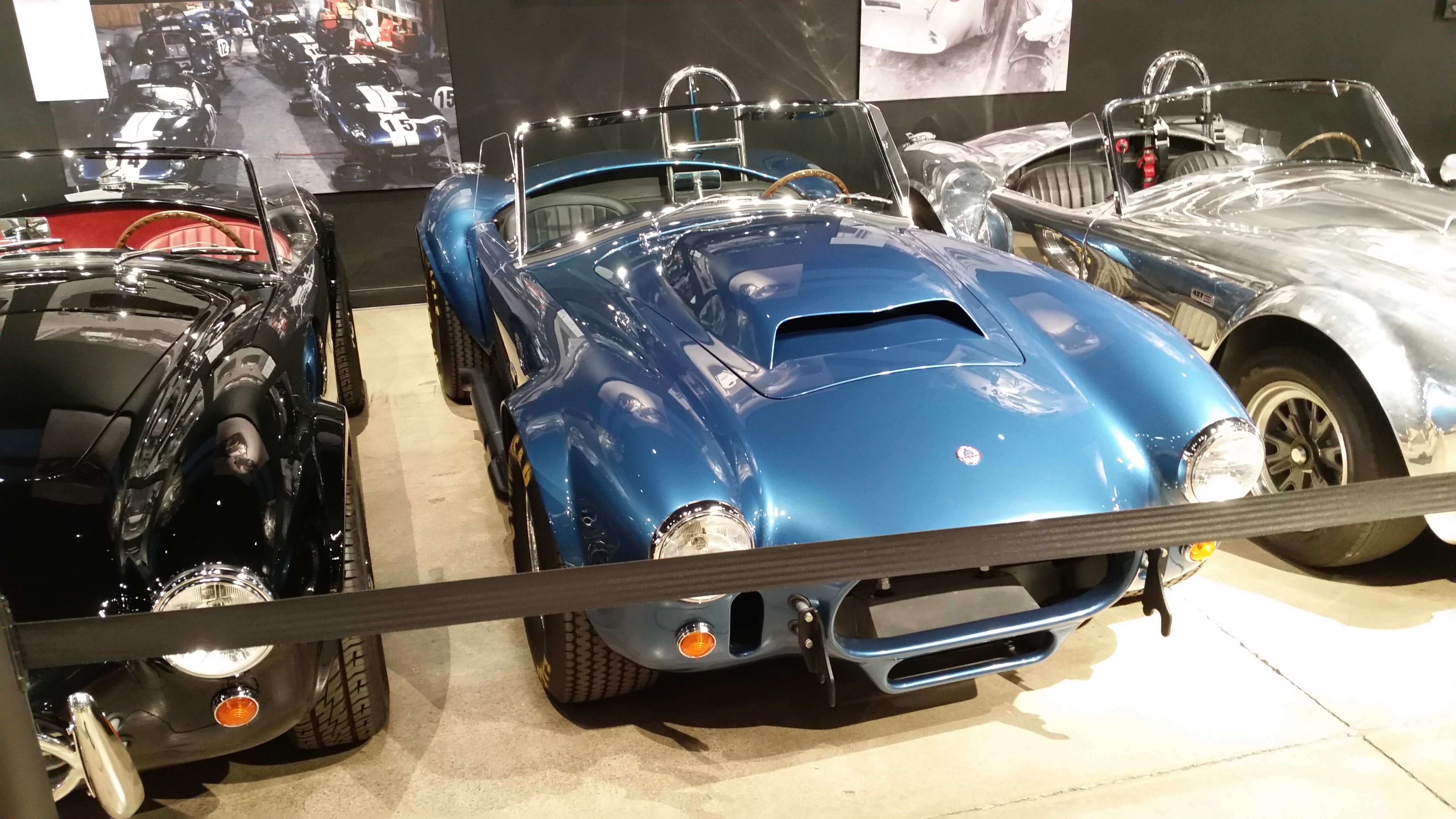 shelby5