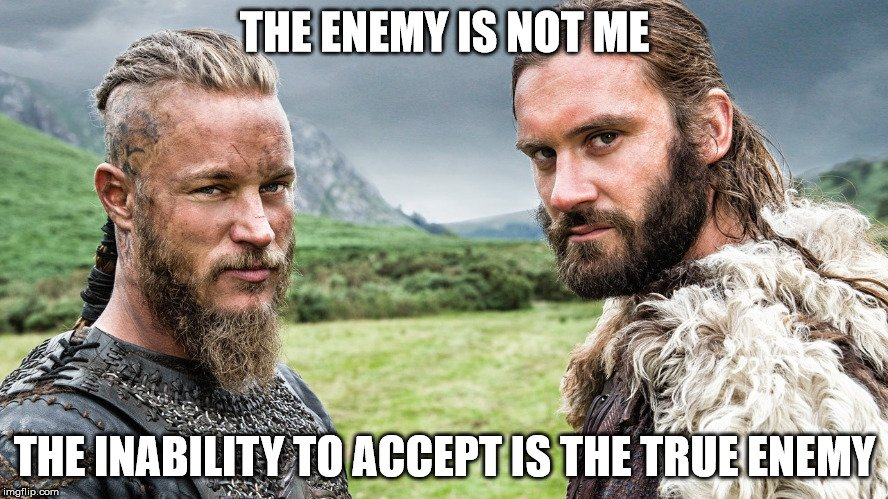 vikings_brothers_meme